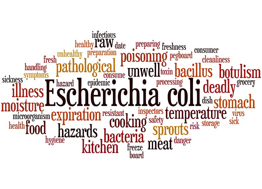 Senior Care in Plano TX: What You Need to Know About E. Coli